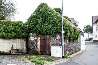 Stangenrod Backhaus