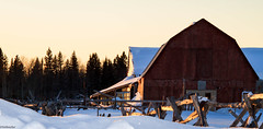 """""""Barn with snake-fence"""" (NetReacher Imagery) Tags: farm barn snakefence northernontario ontariofarm farms landscape landscapes"""