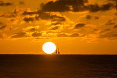Sunset off Waikiki (notgnal) Tags: parrots royalhawaiian sunset waikiki sonyalpha sonyphoto sonya7sii a7sii sonya7r a7r sonya7s a7s sel70200g sel55f18z sel28f20 rokinon rokinon14mm photooftheday project365 365 365project