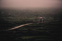Vietnam (♫♪♭Enricodot ♫♪♭ an apple a day....) Tags: enricodot fog green vietnam travel traveler rain umbrella ilobsterit