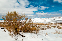 great sand dunes landscape (Sam Scholes) Tags: blue snow mountains sunshine digital landscape nationalpark spring bush sand nikon colorado scenic scrub mosca sanddunes greatsanddunesnationalpark d300