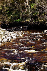 Photo of River Gynack, Kingussie
