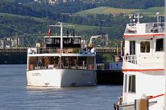 Linzfest 2013 -Tag 1 (austrianpsycho) Tags: bridge river linz fluss schiff danube schiffe donau brücke 2013 linzfest donauschiff donaulände amacerto 18052013 linzfest2013