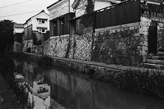 Along the Canal 3 (Purple Field) Tags: street leica bw film monochrome japan analog 35mm walking canal alley kodak iso400 trix rangefinder 400tx  40mm m3  hachiman shiga omi  minilux f24 summarit              x
