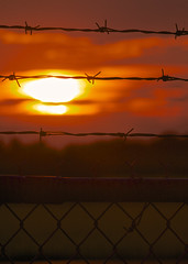 211-365 Project - Barbed Wire Sunset (in the bag solutions) Tags: sunset beauty alone loneliness military barbedwire pictureaday confined project365 canon300mmf4lisusm 365project cfbedmonton 22dec2012to21dec2013