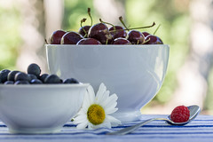 Bowls and Berries (dshoning) Tags: berries bowls odc