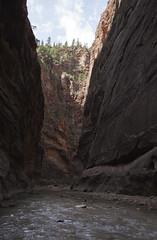 The Narrows (DerickCarss) Tags: park usa america utah ut unitedstates desert canyon national zion np