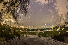 September 27, 2013 (Amanda Catching) Tags: longexposure morning light lake leaves vancouver docks dawn doubleexposure 7d