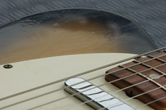 DSC09666 (Ronaldc5) Tags: macro guitar fender sunburst 1968 telecaster a77 sal100m28