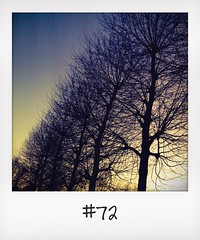 "#DailyPolaroid of 9-12-13 #72 • <a style=""font-size:0.8em;"" href=""http://www.flickr.com/photos/47939785@N05/11431398095/"" target=""_blank"">View on Flickr</a>"