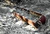 Rusting Water Trough (EmperorNorton47) Tags: california winter nature digital photo afternoon ranching postprocessing whitingranch watertrough portolahills whitingranchwildernesspark whitingranchwilderness