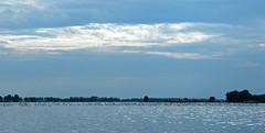Swanlake, Biesbosch (Eduard van Bergen) Tags: sky sun lake water birds animals clouds swimming swan meer kayak waves open wind space group wide floating kayaking swanlake hollands biesbosch amer nieuwe diep merwede canoo werkendam