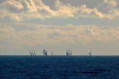 sea water boats boat brighton waves sailing horizon sails sail
