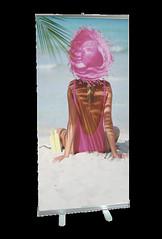 Banner Stand | Signarama | Grimco BSERU1 Picasso