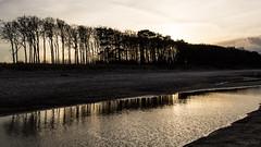 Wasser am Strand (phboehm) Tags: warnemünde rostock