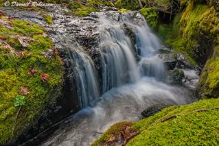 A Sierra Foothills Cascade