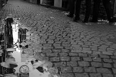 Drosselgasse (Elios.k) Tags: street camera travel november light sky people blackandwhite bw signs reflection travelling tourism water pool leaves sign horizontal canon germany walking outdoors photography three photo alley legs pavement walk perspective pedestrian tourists cobblestone together daytime bodypart narrow paved hesse drosselgasse rdesheimamrhein rudesheimamrhein 5dmkii