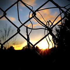 Sunset Through The Gate (Harry Carter*) Tags: camera blue sunset sky cloud sun tree photo weeds focus gate colours bright bokeh flare cannon