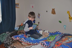 My boy who can read chapter books!