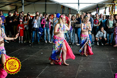 Party People @ Afro-Latino Festival 2015. (www.afro-latino.be) Tags: party summer people music sun field festival fun al concert belgium belgique outdoor live afro belgi zomer muziek luc latino bree zon limburg afrolatino belgien blgica sfeer 2015 hollevoet photobyhollevoetluc beerselerdijk