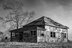 Abandoned Farmhouse In The Morning LIght (Mike Schaffner) Tags: abandoned bw blackwhite blackandwhite decay decayed derelict deserted dilapidated farmhouse home house monochrome old tree chappellhill texas unitedstates us