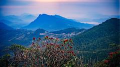 View in Pokhara from Pothana, Nepal (CamelKW) Tags: abc annapurnabasecamptrek annapurnaregiontrek annapurnasanctuary fishtail kathmandu mbc machapuchare machapucharebasecamp nepal pokhara trekking pothana