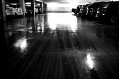 Tracks (Leica M6) (stefankamert) Tags: stefankamert tracks leica m6 leicam6 rangefinder mirrorless reflections black dof grain car carpark voigtländer nokton film analog ilford fp4 blackandwhite blackwhite noir noiretblanc monochrome