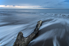 Perseverance (johnkaysleftleg) Tags: blastbeach seaham driftwood tide tidal tidalflow bluehour morning dawn canon760d sigma1020mmf456exdchsm