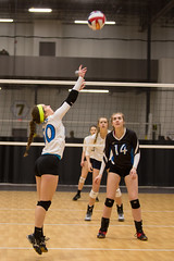 _MG_3466 Tessa Young (popo.uw23) Tags: milwaukee sting center volleyball volley ball club impact girls oshkosh wi wis wisconsin 2017 tessa young teegan nichols