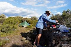 20170301-52-Camp (Roger T Wong) Tags: australia greatpinetier np nationalpark sel1635z sony1635 sonya7ii sonyalpha7ii sonyfe1635mmf4zaosscarlzeissvariotessart sonyilce7m2 tasmania wha wallsofjerusalem worldheritagearea bushwalk camp hike tent trektramp walk