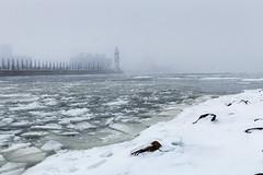 Fleuve de glace (Paul Leb) Tags: hiver montréal québec canada winter glace ice fleuve river fleuvesaintlaurent ruby3