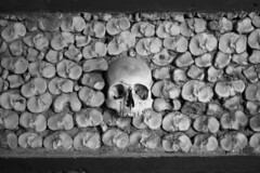 It's keeping track of the pack (Rich xoleman) Tags: skull tomb watching chapel bones
