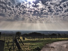iPhone 8 (fannymerle) Tags: wolken weinberge grossumstadt umstadt kelinumstadtwetter