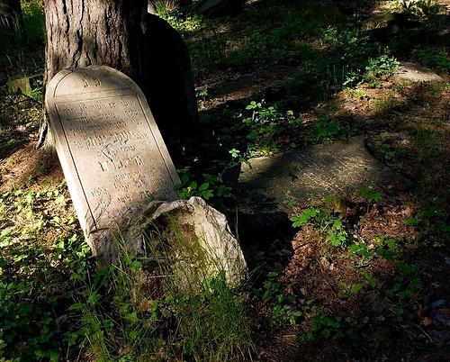 Jewish cemetery in Otwock
