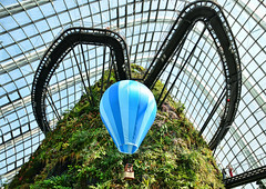 Cloud Forest (chooyutshing) Tags: singapore cloudforest marinabay gardensbythebay nationalparksboard minaturehotairballoon