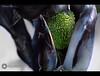 everything have a beginning (Aries Parcum) Tags: green grow have beginning everything 1855 magnifying googel تجربه العدسه باستخدام العادية مكبره لتطوير ramparkimnotstubbornorrecalcitrantfemalebutigrewupinthelapofagreatman