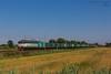 1020 - 655_156   CONTAINER CHEMICAL CARGO A MIGLIARINO 17-6-2013 (treno ROSIGNANO - SAVONA) FULL HD (SPECIALE CAIMANI XMPR) (Frank Andiver TRAIN IN TUSCANY) Tags: italy train canon frank photo italia photos rail trains tuscany rails locomotive toscana treno fs trenitalia treni 655 ferrovie binario caimano fullhd e655 andiver frankandiver trainintuscany