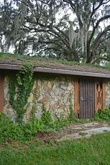 Abandoned House (kellymariemckay) Tags: house tree abandoned nature stone oak florida decay sarasota derelict bradenton