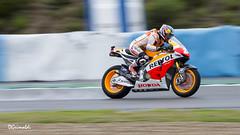 Repsol Honda Team - 26 - Dani Pedrosa - VI - Entrenamientos MotoGP Jerez 2013 (DGrimaldi) Tags: españa david canon honda team 26 andalucia moto deporte motogp cádiz franco repsol circuito grimaldi 70300 barrido danipedrosa 550d paneo dgrimaldi