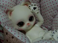a cup of Tsubasa (habiekz) Tags: doll witch bjd luts chu limited abjd zdf