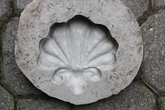 conchiglia_stampo_step2