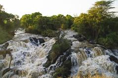 Wasserfall des Awash, Awash-Nationalpark, thiopien (anschieber | niadahoam.de) Tags: wasserfall awashnationalpark 200912 thiopienethiopia