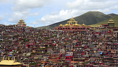 The Religious Encampment of Larung Gar, Tibet 2013 (reurinkjan) Tags: monastery 2013 བོད་ལྗོངས། ©janreurink tibetanplateauབོད་མཐོ་སྒང་bötogang tibetབོད buddhistསངས་རྒྱས་ཆོས་ལུགས་པ nunneryཨ་ནི་དགོན་པ་anidgonpa monkགྲྭ་བ།grwaba buddhismསངས་རྒྱས་ཆོས་ལུགས།sangsrgyaschoslugs greatertibetབོད་ཆེན་པོböchenpo tibetannationalitytibetansབོད་རིགས།bodrigs tibetannationtibetanpeopleབོད་ཀྱི་མི་བརྒྱུདbökyimigyü nunཇོ་མོ།ani sisterhoodཨ་ནིའི་ཚོགས་པanitsokpa khamཁམས།easterntibet ༢༠༡༣ khamཁམས་བོད khamsbodkhamwö sertalགསེར་ཐར།countyserthar larunggarབླ་རུང་སྒར། nyingmapahermitage foundedbydudjomlingpainthelate19thcentury khenpojikpunalsorecognizedastertonsogyeltheincarnationoflerablingpa gyutrullhakhang gyultrullhakang tonpeidekhang monasticcollegeshedraoflarunggar