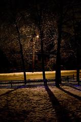 Frozen Three (matthewkaz) Tags: trees winter house snow tree ice home shadows michigan branches freezing icestorm eastlansing freezingrain burcham 2013
