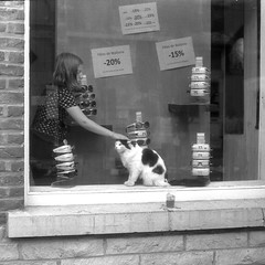 Cat & Glasses (Spotmatix) Tags: street camera film monochrome effects iso100 belgium streetphotography places fed brabantwallon polypanf