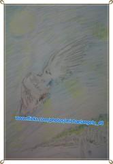 The Holy Spirit - Colored Pencil (michaelangelo_48) Tags: pencil de sketch die god o drawing spirit dove jesus den el lo baptism holy gees colored johannes geist taube der coloured santo duh dieu colombe taufe geest esprito doper espritu zeichnung jezus jeanbaptiste ande doop the gott tekening jsus messias duif he