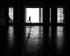 run (Georgie Pauwels) Tags: life street city travel shadow people urban blackandwhite bw sun man berlin geometric public monochrome germany dark alone shadows geometry candid citylife olympus passion moment georgiepauwels vision:outdoor=0865 vision:dark=0734