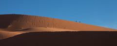 (vampiro nella vigna) Tags: sahara desert marocco inverno deserto 2014