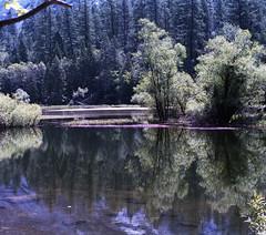 Mirror Lake, Yosemite, 1986 (Ian E. Abbott) Tags: california film mirrorlake yosemite yosemitenationalpark yosemitevalley colorfilm colornegative