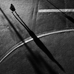 X (. Jianwei .) Tags: light shadow girl vancouver geometry candid sony x line pave 2014 nex kemily stealingshadows nex6